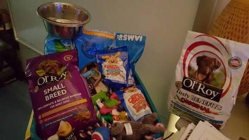 Dog food.jpg